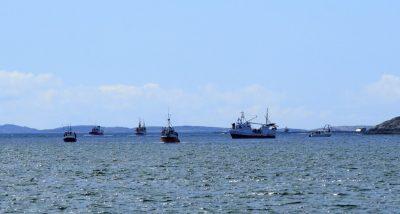 Fiskefestivalen på Bessaker 2012