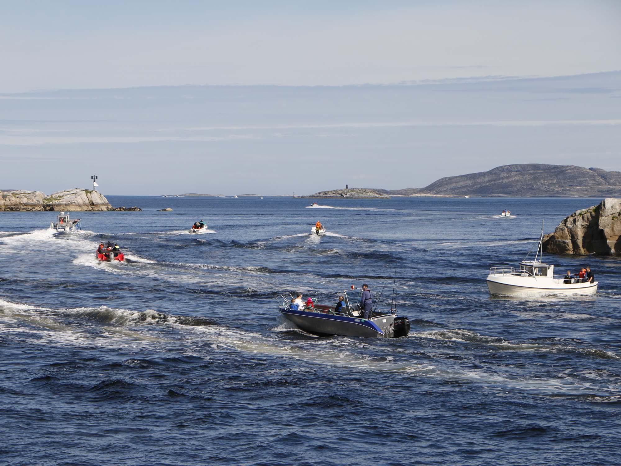 fiskekonkurranse-2017